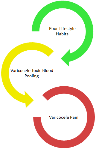 Poor lifestyle habits and varicocele blood pooling lead to varicocele pain.